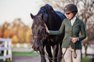 close up of black warmblood and owner walking